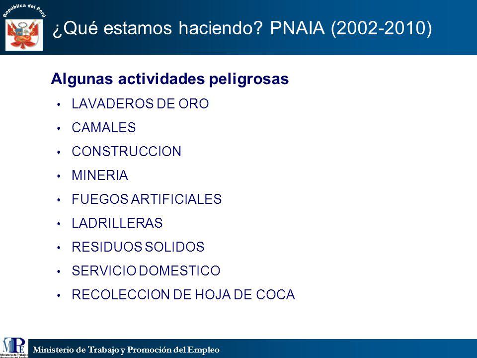 Ministerio de Trabajo y Promoción del Empleo ¿Qué estamos haciendo? PNAIA (2002-2010) Algunas actividades peligrosas LAVADEROS DE ORO CAMALES CONSTRUC