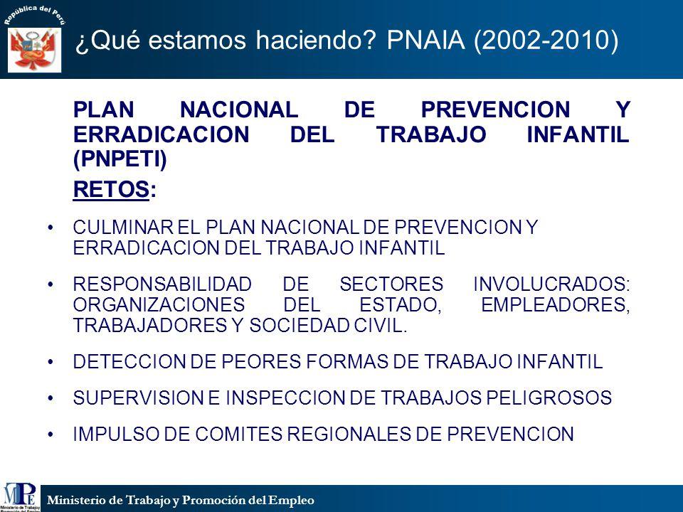 Ministerio de Trabajo y Promoción del Empleo ¿Qué estamos haciendo? PNAIA (2002-2010) PLAN NACIONAL DE PREVENCION Y ERRADICACION DEL TRABAJO INFANTIL