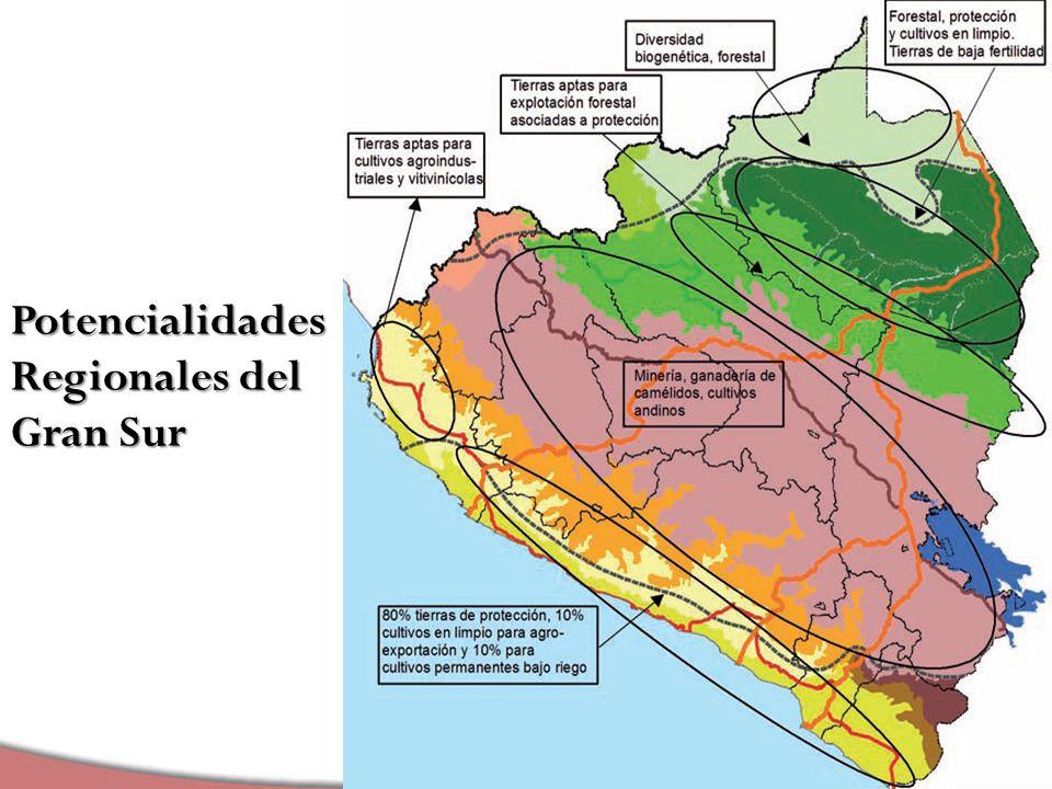 Liderando el Cambio Liderando el Cambio Potencialidades Regionales del Gran Sur
