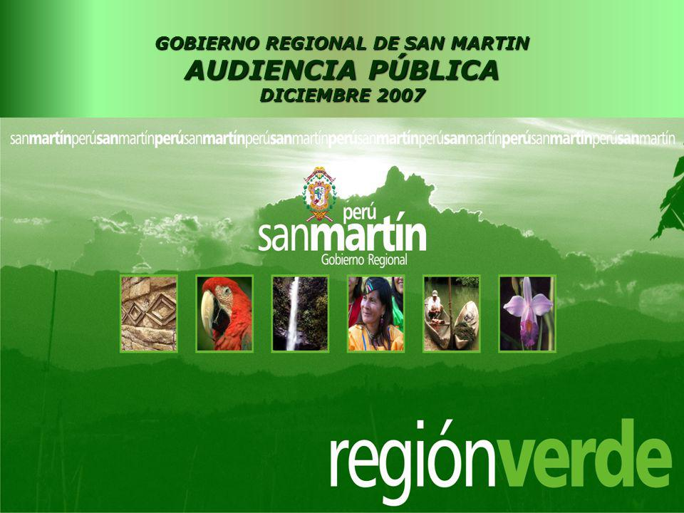 GOBIERNO REGIONAL DE SAN MARTIN AUDIENCIA PÚBLICA DICIEMBRE 2007