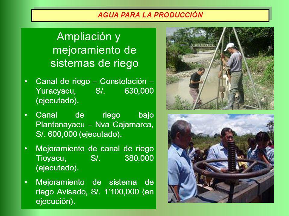 Ampliación y mejoramiento de sistemas de riego Canal de riego – Constelación – Yuracyacu, S/. 630,000 (ejecutado). Canal de riego bajo Plantanayacu –