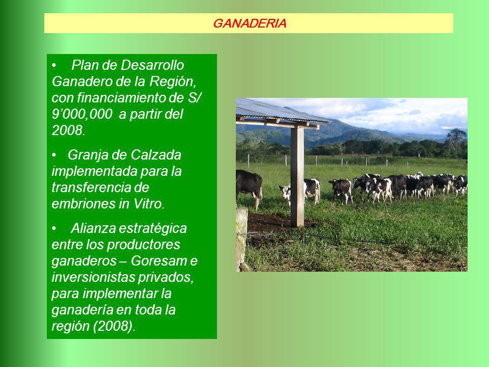 Plan de Desarrollo Ganadero de la Región, con financiamiento de S/ 9000,000 a partir del 2008. Granja de Calzada implementada para la transferencia de