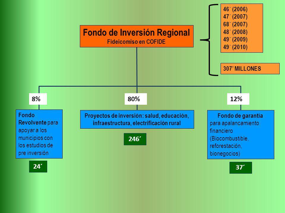 Fondo Revolvente para apoyar a los municipios con los estudios de pre inversión Fondo de garantía para apalancamiento financiero (Biocombustible, refo