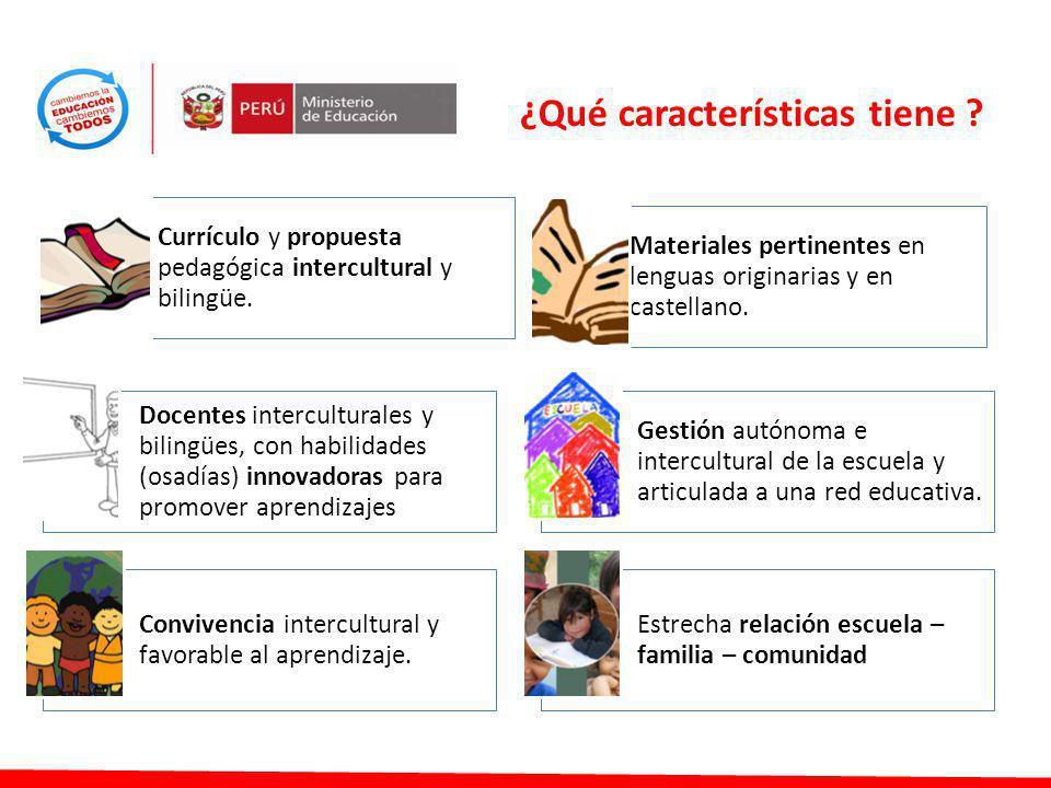 ¿Qué características tiene ? Materiales pertinentes en lenguas originarias y en castellano. Currículo y propuesta pedagógica intercultural y bilingüe.