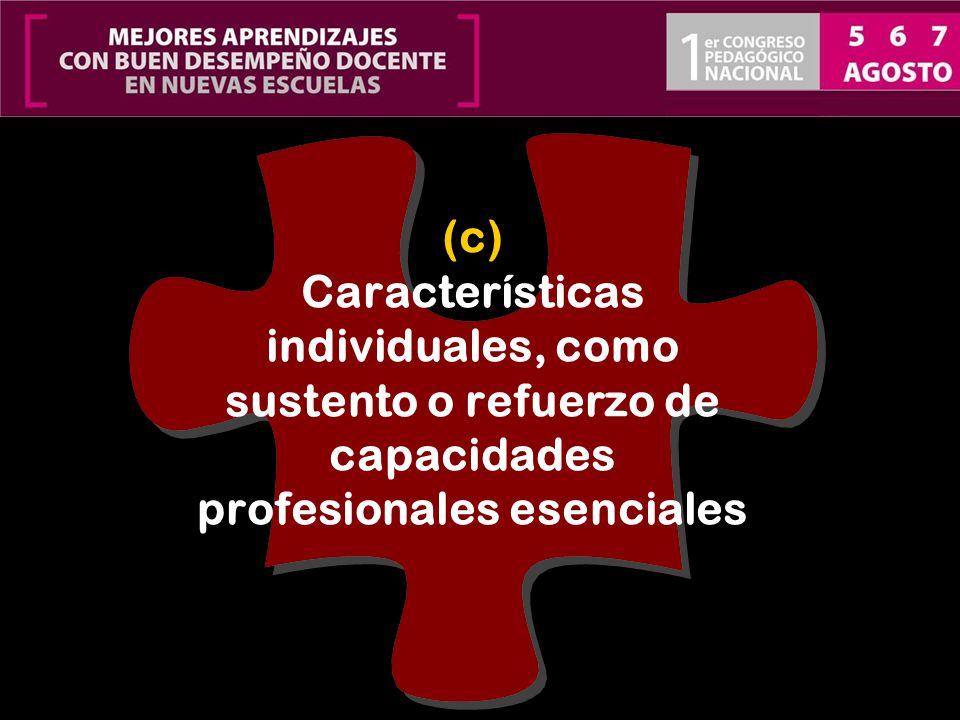 (c) Características individuales, como sustento o refuerzo de capacidades profesionales esenciales