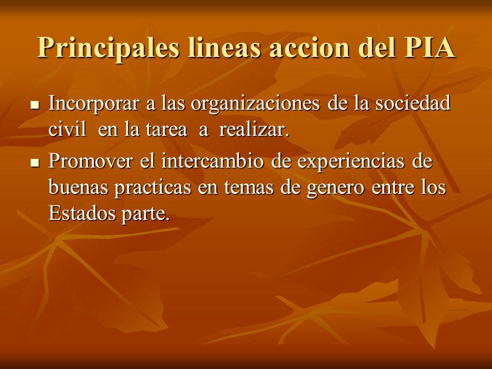 Principales lineas accion del PIA Incorporar a las organizaciones de la sociedad civil en la tarea a realizar. Incorporar a las organizaciones de la s