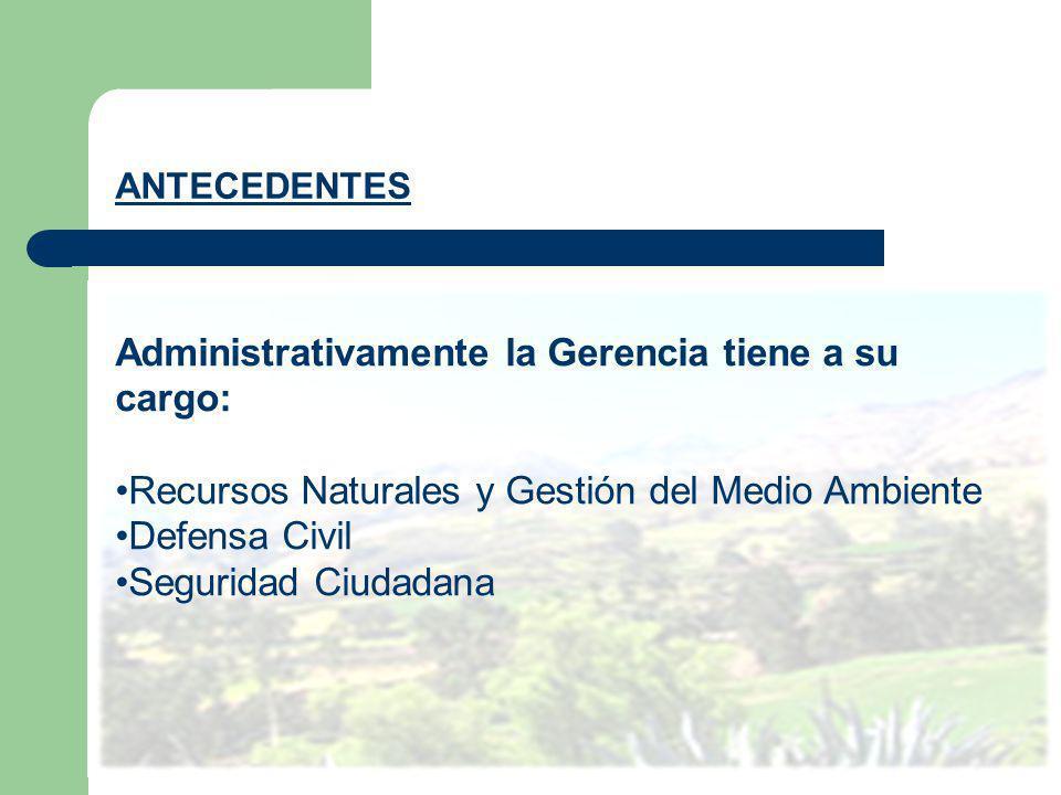 ANTECEDENTES Administrativamente la Gerencia tiene a su cargo: Recursos Naturales y Gestión del Medio Ambiente Defensa Civil Seguridad Ciudadana