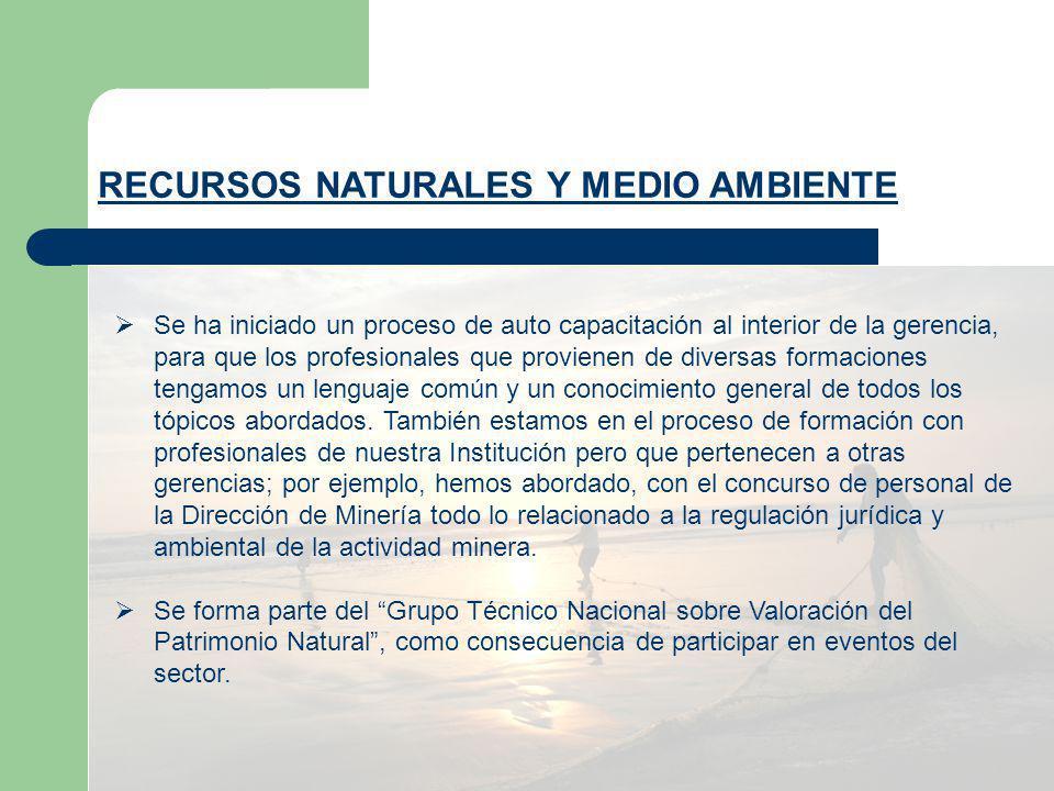 Participación en Eventos DEFENSA CIVIL Reuniones de transferencia de funciones con la PCM INDECI INGGEMETT SENAMHI SINACYTEC Bomberos Voluntarios del Perú