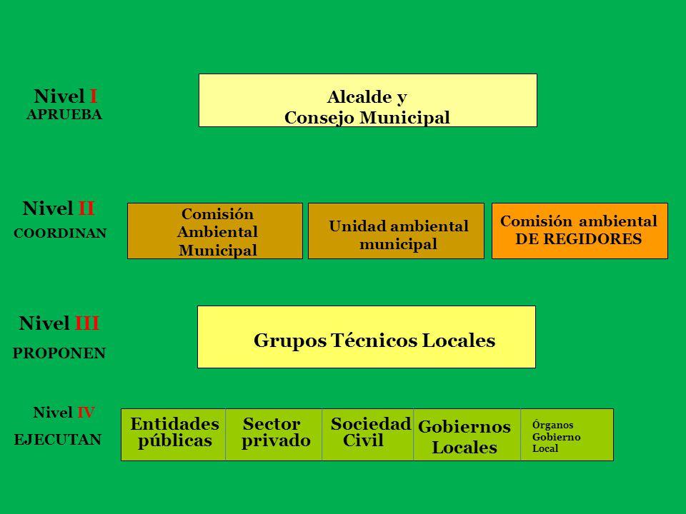 REGIONAL Alcalde y Consejo Municipal Comisión ambiental DE REGIDORES Grupos Técnicos Regionales Grupos Técnicos Locales Ambiental Regional- Comisión A