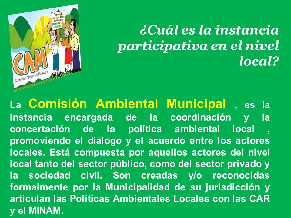 ¿Cuál es la instancia participativa en el nivel local? La Comisión Ambiental Municipal, es la instancia encargada de la coordinación y la concertación