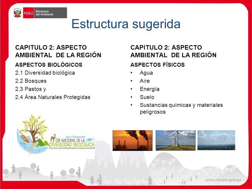 Estructura sugerida CAPITULO 2: ASPECTO AMBIENTAL DE LA REGIÓN ASPECTOS BIOLÓGICOS 2.1 Diversidad biológica 2.2 Bosques 2.3 Pastos y 2.4 Área Naturale