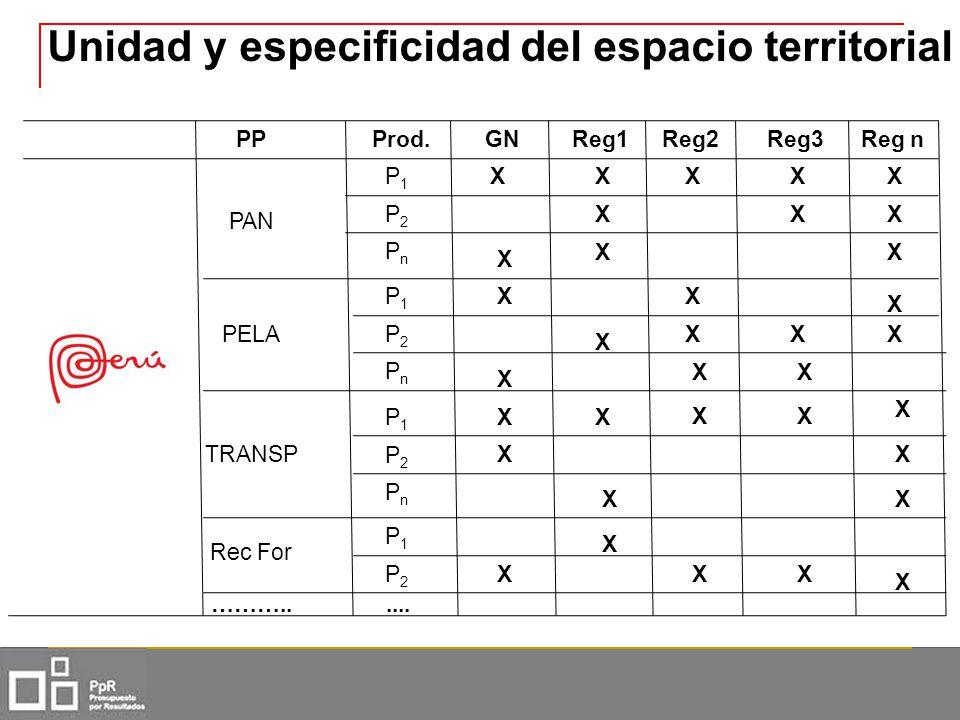 Unidad y especificidad del espacio territorial PPProd.GNReg1Reg2Reg n PAN PELA TRANSP Rec For P1P1 P2P2 PnPn P1P1 P2P2 PnPn P1P1 P2P2 PnPn P1P1 P2P2 …