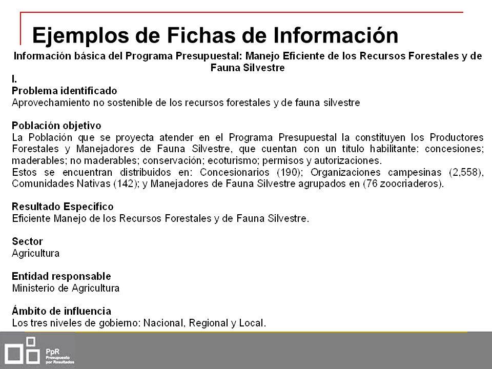 Ejemplos de Fichas de Información