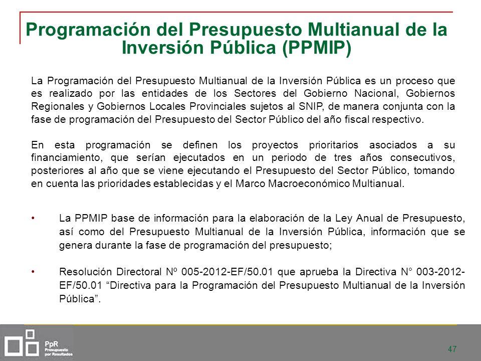 47 Programación del Presupuesto Multianual de la Inversión Pública (PPMIP) La Programación del Presupuesto Multianual de la Inversión Pública es un pr