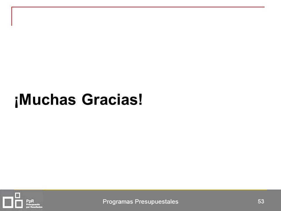 Programas Presupuestales 53 ¡Muchas Gracias!