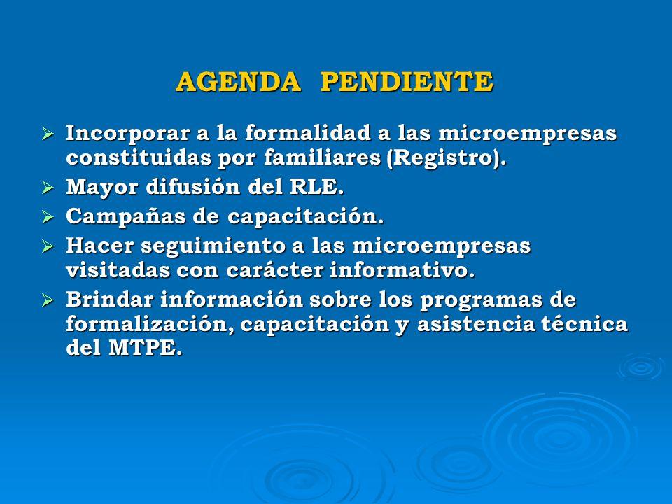 AGENDA PENDIENTE Registro Nacional Virtual de la MYPE (MTPE, SUNAT, ESSALUD). Registro Nacional Virtual de la MYPE (MTPE, SUNAT, ESSALUD). Establecer