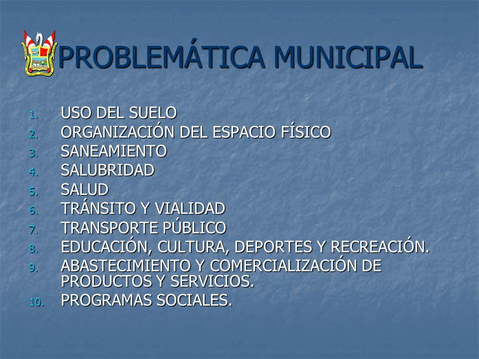 PROBLEMÁTICA MUNICIPAL 1. USO DEL SUELO 2. ORGANIZACIÓN DEL ESPACIO FÍSICO 3. SANEAMIENTO 4. SALUBRIDAD 5. SALUD 6. TRÁNSITO Y VIALIDAD 7. TRANSPORTE