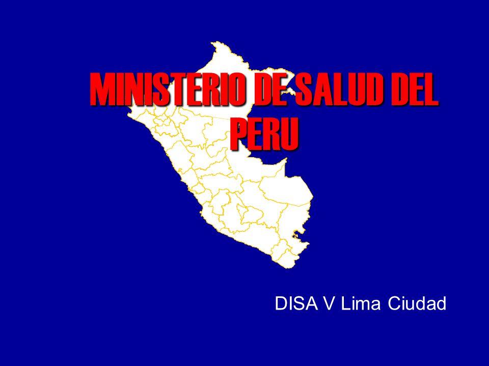 MINISTERIO DE SALUD DEL PERU DISA V Lima Ciudad