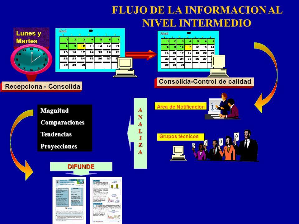 FLUJO DE LA INFORMACION AL NIVEL INTERMEDIO Area de Notificación ANALIZA Lunes y Martes Recepciona - Consolida Enero Abril D D L L M M M M J J V V S S