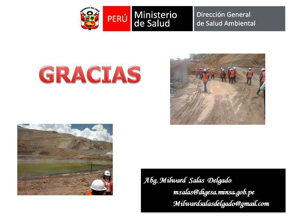 Abg. Milward Salas Delgado msalas@digesa.minsa.gob.peMilwardsalasdelgado@gmail.com msalas@digesa.minsa.gob.peMilwardsalasdelgado@gmail.com