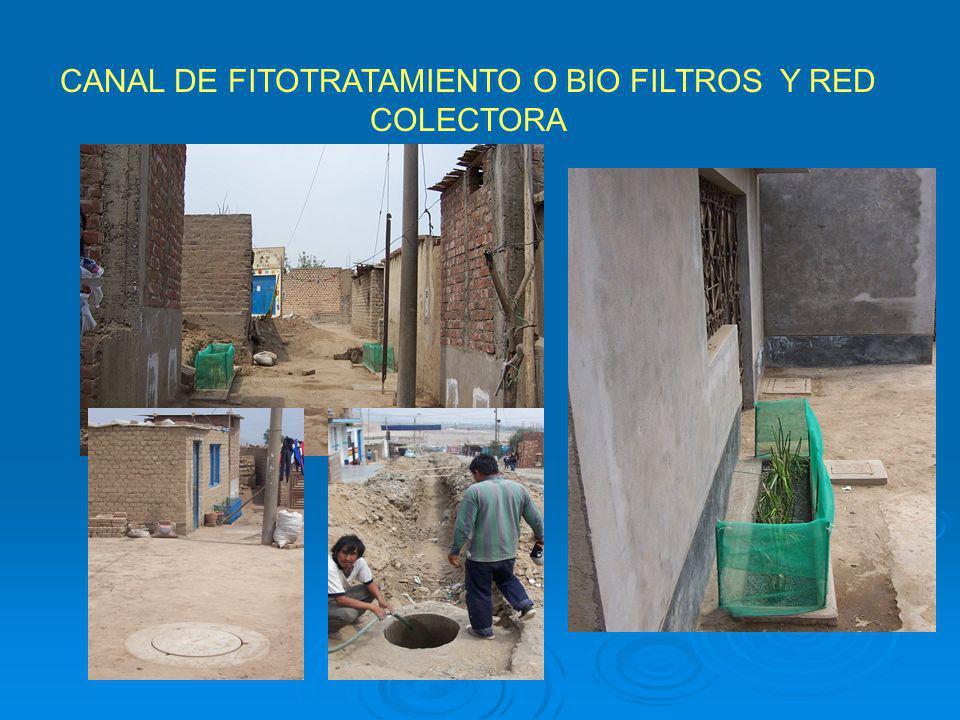 CANAL DE FITOTRATAMIENTO O BIO FILTROS Y RED COLECTORA