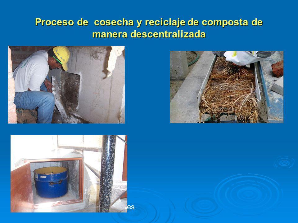 Proceso de cosecha y reciclaje de composta de manera descentralizada reciclaje de nutrientes