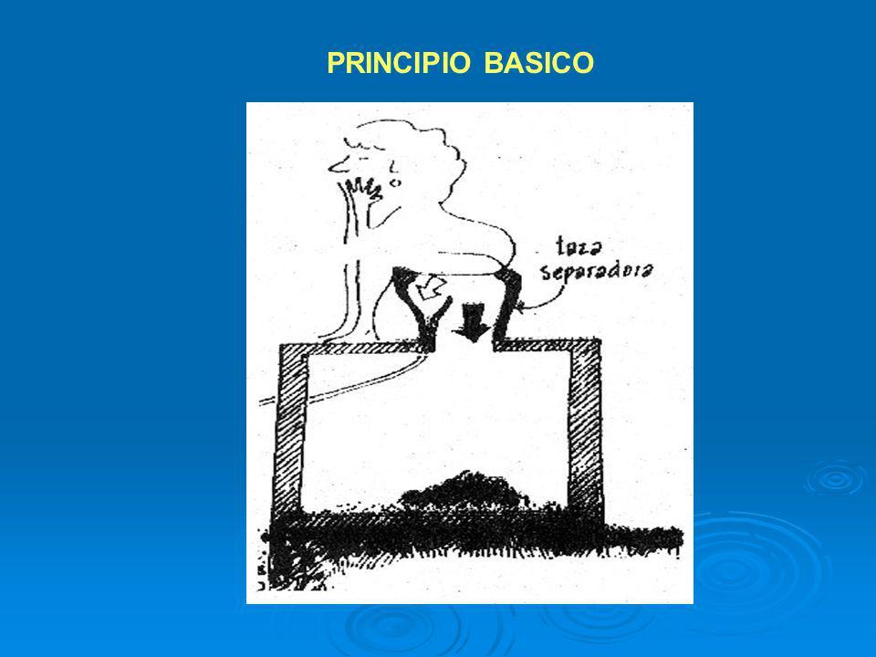 PRINCIPIO BASICO