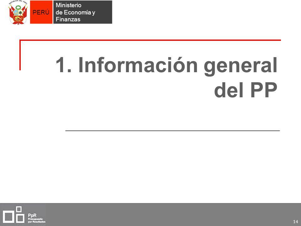PERÚ Ministerio de Economía y Finanzas 14 1. Información general del PP