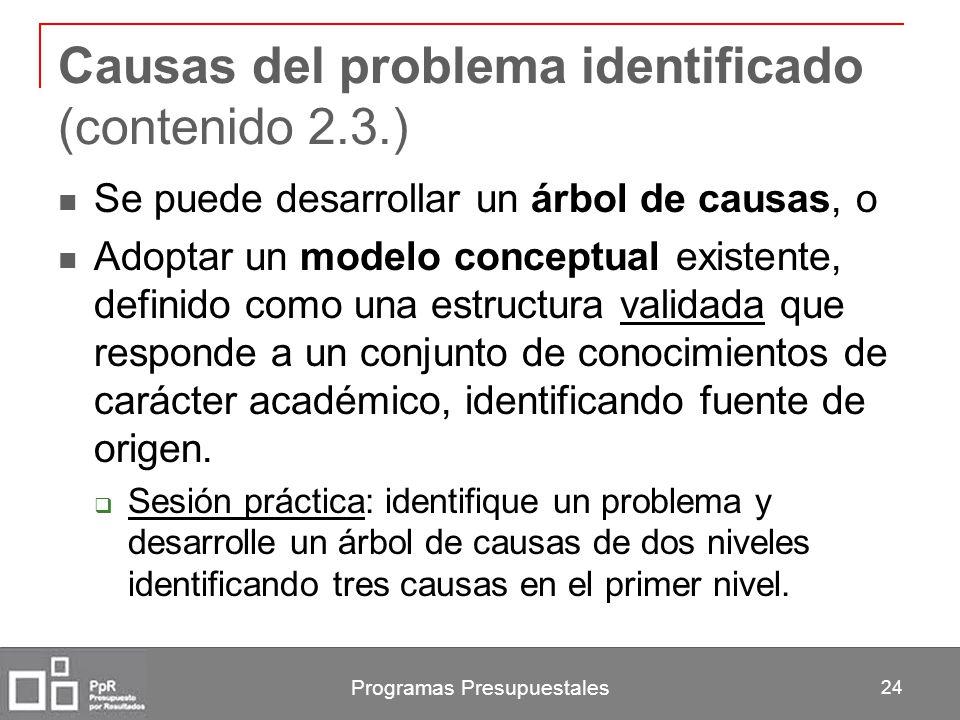 Programas Presupuestales 24 Causas del problema identificado (contenido 2.3.) Se puede desarrollar un árbol de causas, o Adoptar un modelo conceptual