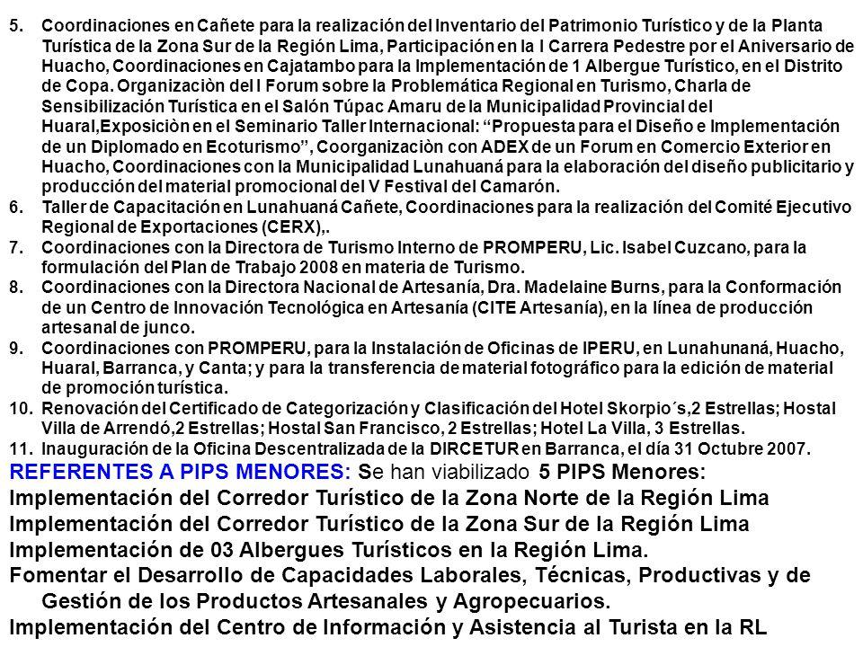 5.Coordinaciones en Cañete para la realización del Inventario del Patrimonio Turístico y de la Planta Turística de la Zona Sur de la Región Lima, Part