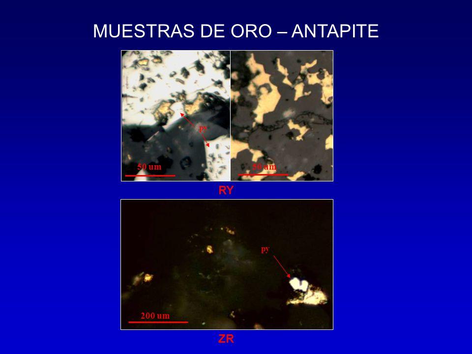 MUESTRAS DE ORO – ANTAPITE 50 um py 200 um RY ZR