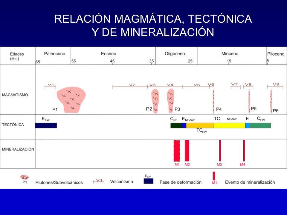 RELACIÓN MAGMÁTICA, TECTÓNICA Y DE MINERALIZACIÓN