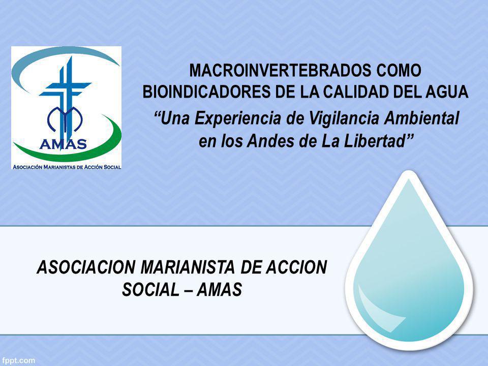 MACROINVERTEBRADOS COMO BIOINDICADORES DE LA CALIDAD DEL AGUA Una Experiencia de Vigilancia Ambiental en los Andes de La Libertad ASOCIACION MARIANIST