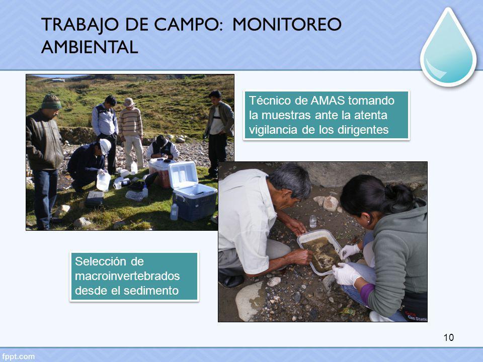 10 Técnico de AMAS tomando la muestras ante la atenta vigilancia de los dirigentes Selección de macroinvertebrados desde el sedimento TRABAJO DE CAMPO