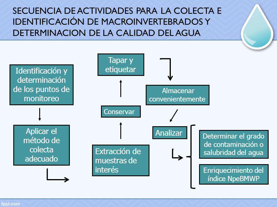 Identificación y determinación de los puntos de monitoreo Aplicar el método de colecta adecuado Extracción de muestras de interés Conservar Tapar y et
