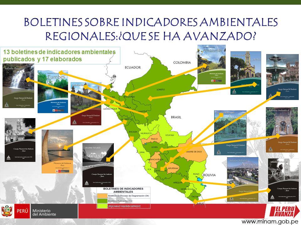 13 boletines de indicadores ambientales publicados y 17 elaborados