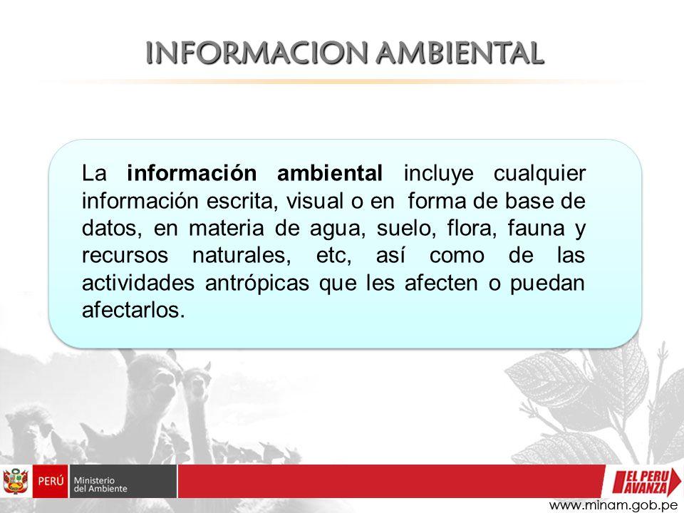 INFORMACION AMBIENTAL La información ambiental incluye cualquier información escrita, visual o en forma de base de datos, en materia de agua, suelo, f
