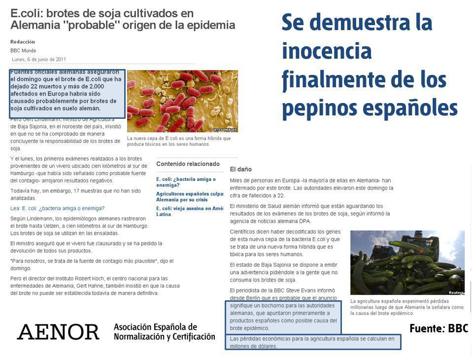 Se demuestra la inocencia finalmente de los pepinos españoles