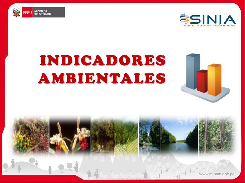 ÍNDICE Un índice es una categorización numérica o descriptiva de una gran cantidad de información ambiental, con el propósito de simplificar tales datos y hacer más fácil la toma de decisiones.