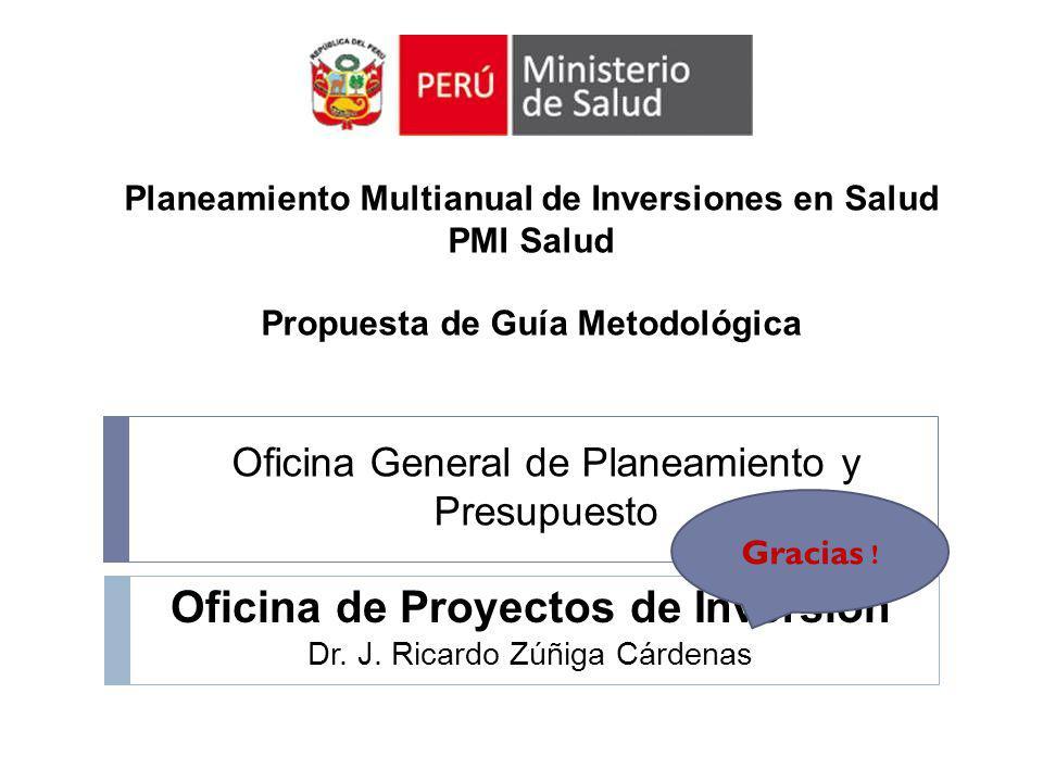 Oficina de Proyectos de Inversión Dr. J. Ricardo Zúñiga Cárdenas Oficina General de Planeamiento y Presupuesto Gracias ! Planeamiento Multianual de In