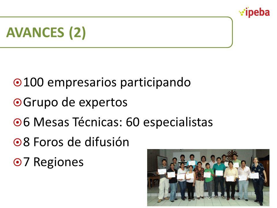 AVANCES (2) 100 empresarios participando Grupo de expertos 6 Mesas Técnicas: 60 especialistas 8 Foros de difusión 7 Regiones