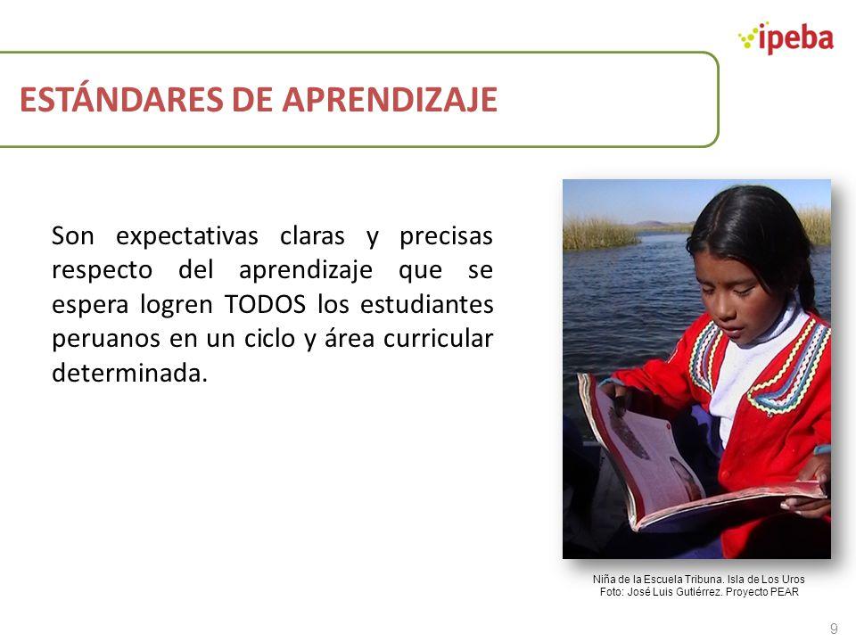 ESTÁNDARES DE APRENDIZAJE Son expectativas claras y precisas respecto del aprendizaje que se espera logren TODOS los estudiantes peruanos en un ciclo