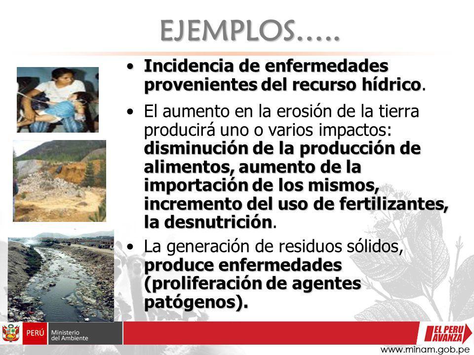 Incidencia de enfermedades provenientes del recurso hídricoIncidencia de enfermedades provenientes del recurso hídrico. disminución de la producción d