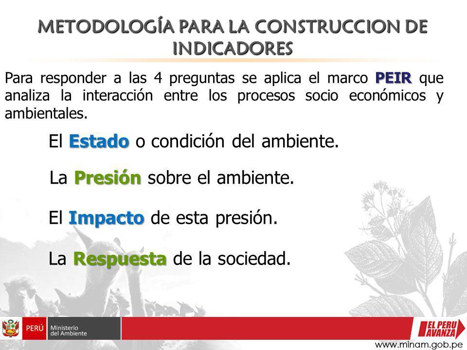 Presión La Presión sobre el ambiente. PEIR Para responder a las 4 preguntas se aplica el marco PEIR que analiza la interacción entre los procesos soci