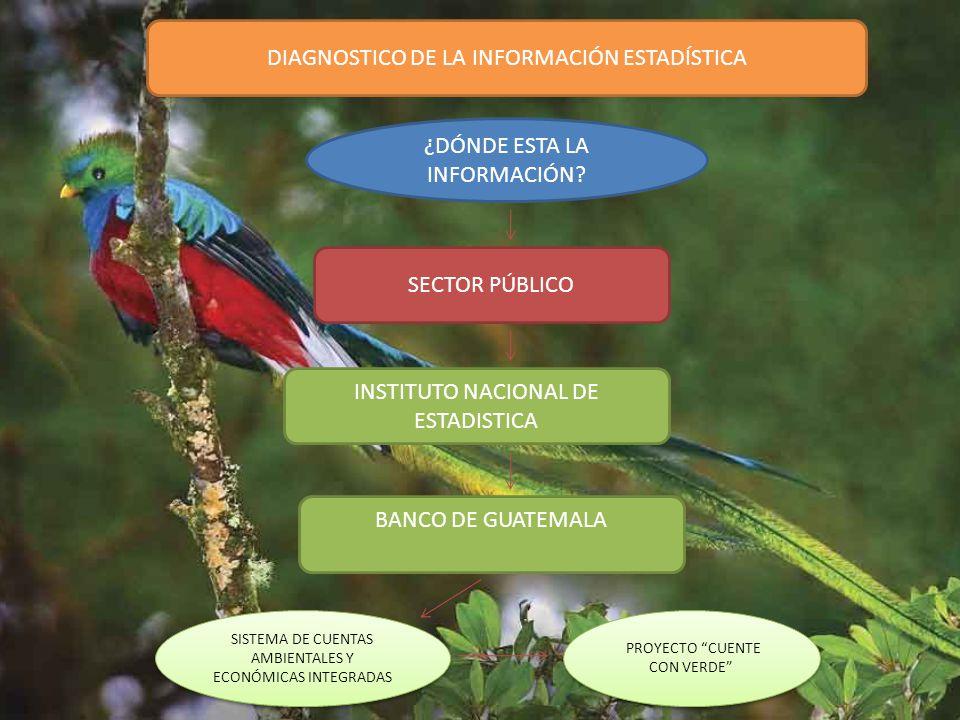 ESTABLECIMIENTO DE LA NORMA PRODUCCIÓN MÁS LIMPIA El 29 de noviembre de 2013, el Consejo Nacional de Normalización de la Comisión Guatemalteca de Normas del Ministerio de Economía –COGUANOR-, aprobó la norma de Producción más Limpia, Acuerdo voluntario Público-Privado (COGUANOR NTG 150001) La solicitud para la aprobación de esta norma fue presentada por el Comité de Producción más Limpia.