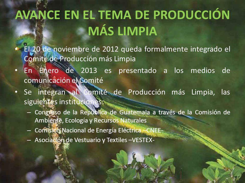 AVANCE EN EL TEMA DE PRODUCCIÓN MÁS LIMPIA El 20 de noviembre de 2012 queda formalmente integrado el Comité de Producción más Limpia En Enero de 2013 es presentado a los medios de comunicación el Comité Se integran al Comité de Producción más Limpia, las siguientes instituciones: – Congreso de la República de Guatemala a través de la Comisión de Ambiente, Ecología y Recursos Naturales – Comisión Nacional de Energía Eléctrica –CNEE- – Asociación de Vestuario y Textiles –VESTEX-
