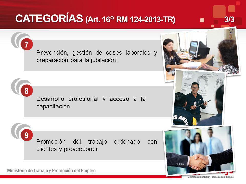 CATEGORÍAS (Art. 16° RM 124-2013-TR)3/3 8 Desarrollo profesional y acceso a la capacitación. 9 Promoción del trabajo ordenado con clientes y proveedor