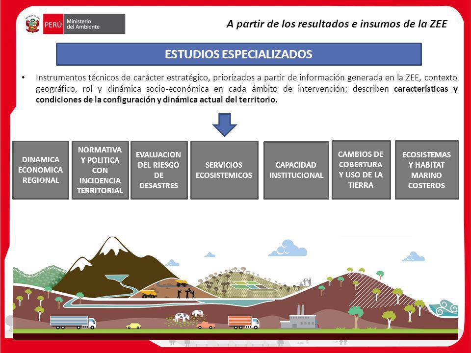 DINAMICA ECONOMICA REGIONAL NORMATIVA Y POLITICA CON INCIDENCIA TERRITORIAL EVALUACION DEL RIESGO DE DESASTRES SERVICIOS ECOSISTEMICOS CAMBIOS DE COBE
