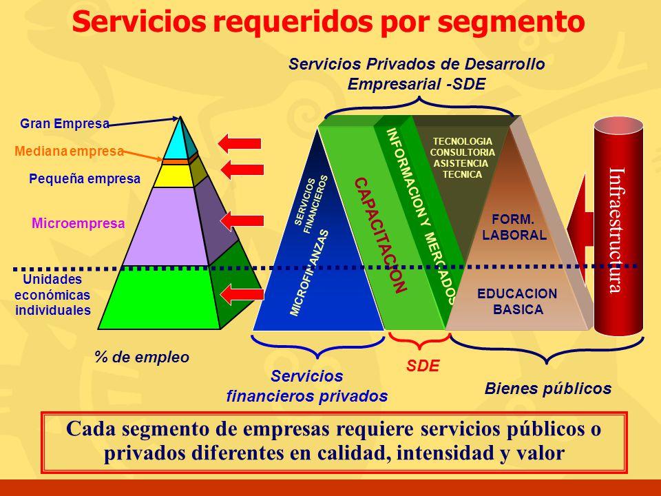 Unidades económicas individuales Microempresa Pequeña empresa Mediana empresa Gran Empresa % de empleo CAPACITACION INFORMACION Y MERCADOS TECNOLOGIA