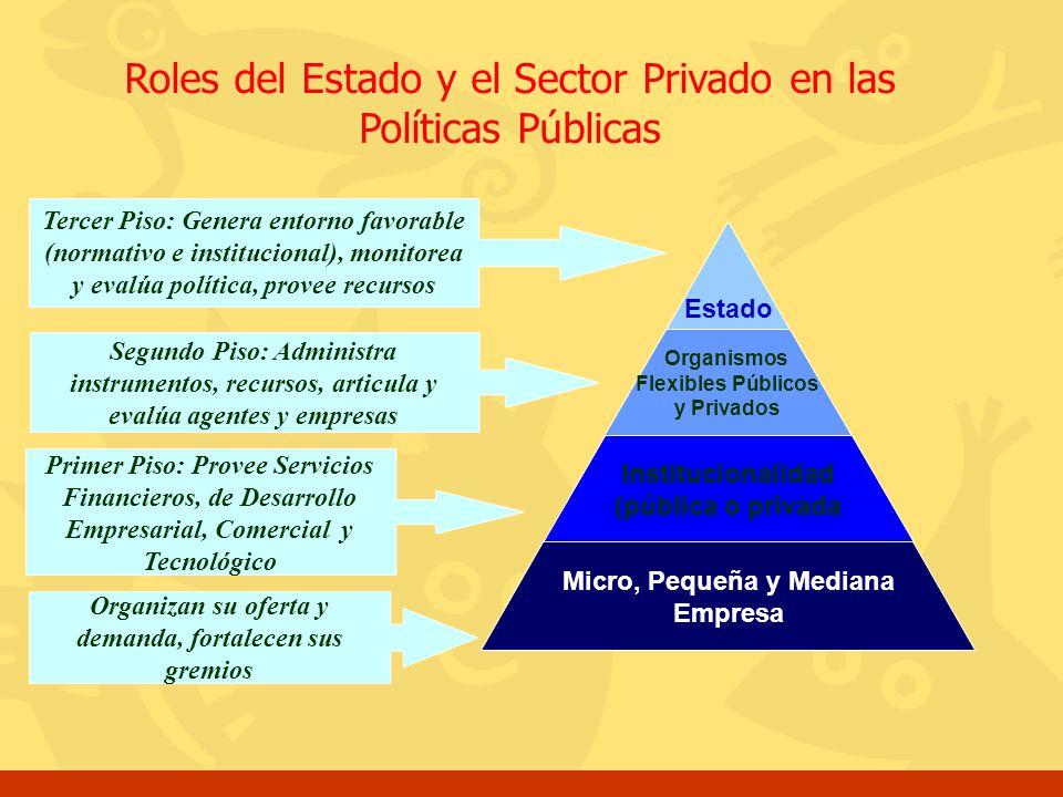 Roles del Estado y el Sector Privado en las Políticas Públicas Estado Organismos Flexibles Públicos y Privados Institucionalidad (pública o privada Mi